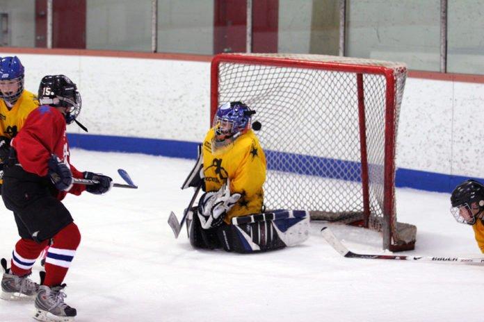 2017-2018 youth hockey tournament