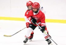 bullying in minor hockey