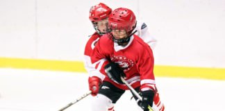 bullying in minor hockey