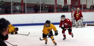confessions of a hockey parent