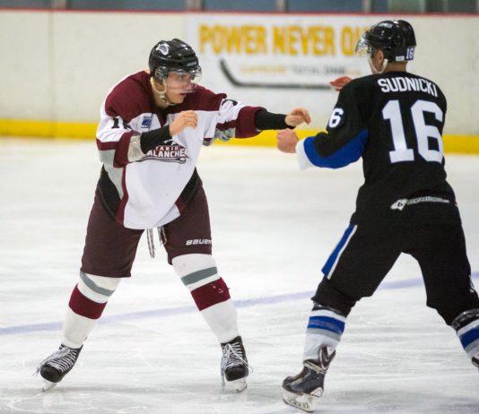 fighting in hockey